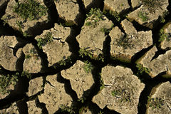 ξηρό έδαφος Στοκ φωτογραφία με δικαίωμα ελεύθερης χρήσης