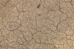 ξηρό έδαφος Στοκ Φωτογραφίες
