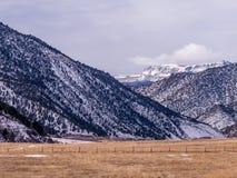 Ξηρό λιβάδι με τους χιονώδεις λόφους Στοκ Φωτογραφία