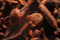 Ξηρό καρύκευμα γαρίφαλων στοκ εικόνες με δικαίωμα ελεύθερης χρήσης