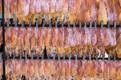 Ξηρό καλαμάρι στη σειρά Στοκ φωτογραφία με δικαίωμα ελεύθερης χρήσης