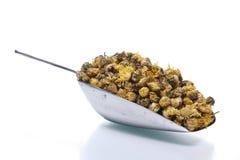 ξηρό κουτάλι χρυσάνθεμων αργιλίου Στοκ Εικόνες
