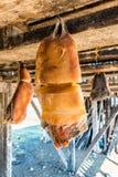 Ξηρό κρέας καρχαριών, Hákarl, Ισλανδία Στοκ φωτογραφία με δικαίωμα ελεύθερης χρήσης