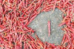 Ξηρό κόκκινο πιπέρι στοκ φωτογραφίες