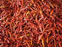 ξηρό κόκκινο πιπεριών στοκ φωτογραφία