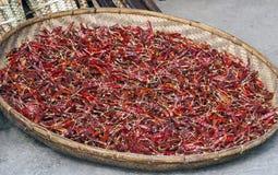 Ξηρό κόκκινο τσίλι σε ένα πιάτο καλαθιών Στοκ εικόνα με δικαίωμα ελεύθερης χρήσης