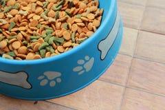 Ξηρό κύπελλο τροφίμων σκυλιών, χρήσιμο για τα υπόβαθρα Στοκ εικόνα με δικαίωμα ελεύθερης χρήσης
