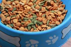 Ξηρό κύπελλο τροφίμων σκυλιών, χρήσιμο για τα υπόβαθρα Στοκ Εικόνα