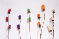 Ξηρό λουλούδι στοκ εικόνα με δικαίωμα ελεύθερης χρήσης