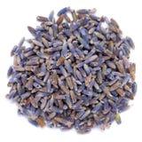 Ξηρό οργανικό αληθινό Lavender angustifolia Lavandula Στοκ εικόνα με δικαίωμα ελεύθερης χρήσης