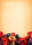 ξηρό παλαιό έγγραφο λουλουδιών Στοκ Εικόνες