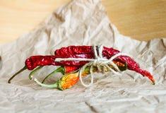ξηρό πιπέρι τσίλι Στοκ φωτογραφία με δικαίωμα ελεύθερης χρήσης