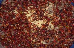 ξηρό πιπέρι Στοκ φωτογραφίες με δικαίωμα ελεύθερης χρήσης