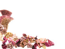 ξηρό ποτ πουρί φύλλων λουλουδιών συνόρων Στοκ Φωτογραφίες