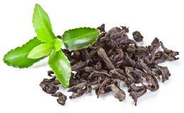 ξηρό πράσινο τσάι φύλλων σωρώ&n Στοκ Φωτογραφίες