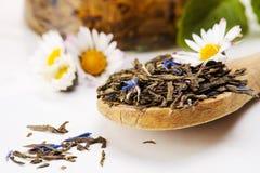 ξηρό πράσινο τσάι Στοκ Εικόνες