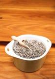 ξηρό πράσινο lavender δοχείο Στοκ φωτογραφίες με δικαίωμα ελεύθερης χρήσης