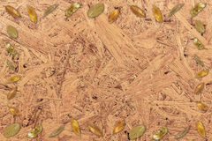 Ξηρό πλαίσιο φύλλων στην ξύλινη βαγάσση κιβωτίων που ανακυκλώνεται στοκ εικόνα με δικαίωμα ελεύθερης χρήσης