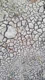 Ξηρό ραγισμένο χώμα Στοκ εικόνες με δικαίωμα ελεύθερης χρήσης