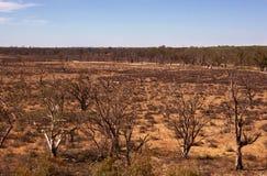 ξηρό σκληρό έδαφος ξηρασίας Στοκ Φωτογραφία