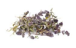 Ξηρό τσάι θυμαριού σε ένα άσπρο υπόβαθρο Λουλούδια του θυμαριού στη φύση Το θυμάρι χρησιμοποιείται συνήθως στη μαγειρική και στη  στοκ εικόνα