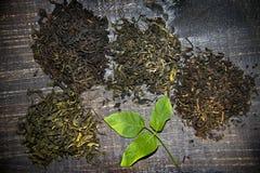 Ξηρό τσάι στο ξύλινο υπόβαθρο Στοκ εικόνες με δικαίωμα ελεύθερης χρήσης