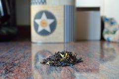 ξηρό τσάι Στοκ Φωτογραφίες