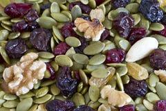 Ξηρό υπόβαθρο σπόρων και καρυδιών Στοκ εικόνα με δικαίωμα ελεύθερης χρήσης