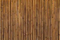 Ξηρό υπόβαθρο σχεδίων μπαμπού Στοκ Εικόνα