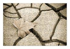 ξηρό φύλλο στο έδαφος - εικόνα έννοιας στη μορφή γρίφων Στοκ Εικόνες