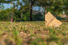 Ξηρό φύλλο στο πάτωμα χλόης στο πάρκο στοκ φωτογραφίες
