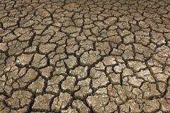 Ξηρό χώμα ξηρό Στοκ Εικόνες