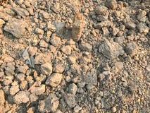 Ξηρό χώμα στο εργοτάξιο οικοδομής Στοκ Φωτογραφίες