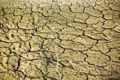 Ξηρό χώμα στο κατώτατο σημείο λιμνών κατά τη διάρκεια της ξηρότητας Στοκ Εικόνες