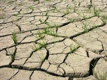 ξηρό χώμα Στοκ Εικόνα