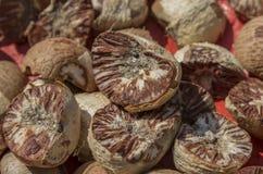 Ξηρό betel - καρύδι. στοκ εικόνα