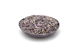 Ξηρό lavender τσάι στο πιάτο metall, που απομονώνεται στο άσπρο υπόβαθρο Στοκ Εικόνα