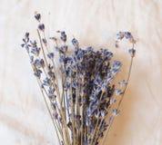ξηρό lavender Στοκ φωτογραφίες με δικαίωμα ελεύθερης χρήσης