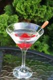 Ξηρό Martini Στοκ φωτογραφία με δικαίωμα ελεύθερης χρήσης