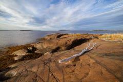 ξηρό seacoast τοπίων κλάδων επάνω Στοκ Εικόνες