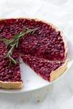 Ξινός με το κόκκινο μύρτιλλο σε ένα άσπρο πιάτο Στοκ φωτογραφίες με δικαίωμα ελεύθερης χρήσης