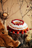 Ξινός τις φράουλες και την κτυπημένη κρέμα που διακοσμούνται με με το λιβάδι μεντών Στοκ εικόνες με δικαίωμα ελεύθερης χρήσης