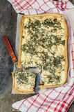 Ξινός-flan με τα μανιτάρια, τα χορτάρια και το τυρί Στοκ Εικόνες