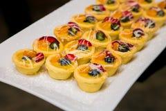 Ξινό επιδόρπιο πουτίγκας φρούτων κρέμας και μούρων στοκ εικόνες με δικαίωμα ελεύθερης χρήσης