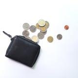 Ξοδεψτε όλα τα χρήματα σε ένα πορτοφόλι Στοκ Εικόνα