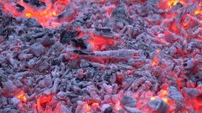 Ξυλάνθρακας που καίγεται με το ζωηρόχρωμο πορτοκαλί φως στην εστία φλογών φωτιών καυσόξυλου στον καταπληκτικό άνετο ικανοποιώντας φιλμ μικρού μήκους