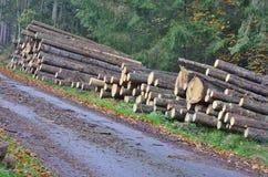 Ξυλεία έτοιμη για τη μεταφορά, νότια Βοημία στοκ φωτογραφίες με δικαίωμα ελεύθερης χρήσης