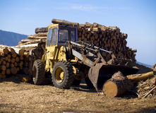 ξυλεία βιομηχανίας στοκ φωτογραφίες