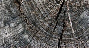 ξυλεία παλαιά στοκ φωτογραφία με δικαίωμα ελεύθερης χρήσης