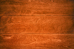 ξυλεία πλατύφυλλων πατω& Στοκ εικόνες με δικαίωμα ελεύθερης χρήσης